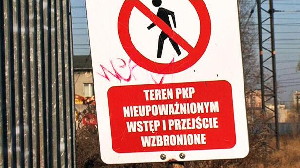 fot. Marcin Gula/tvnwarszawa.pl