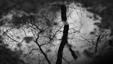 """Ciemno, mglisto, wilgotno i sennie. Uroki """"zgniłego wyżu"""""""