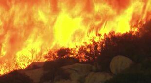 Pożar w kalifornijskiej winnicy